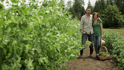 Mature couple standing in a field on farm Stock Video Footage