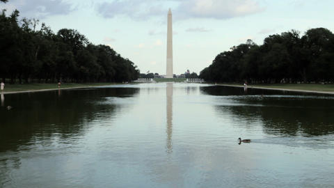 Friends taking photographs near washington monument Stock Video Footage