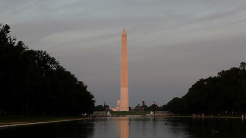 Washington monument and reflecting pool, tilt down Stock Video Footage