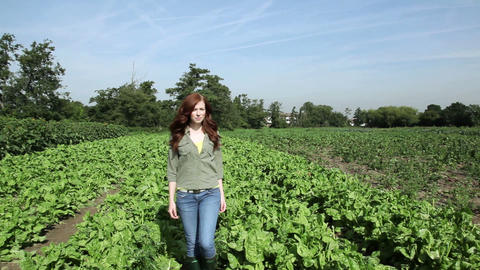 Young woman walking through field Stock Video Footage