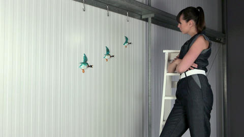 Young woman on stepladder, flying ducks on wall Stock Video Footage