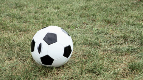 Girl soccer players doing warm up Stock Video Footage