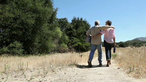 Rear view of couple walking on rural path Stock Video Footage