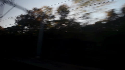 View from train as it passes trees Stock Video Footage