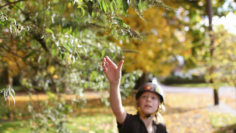 Boy skateboarding and pulling leaf from tree Stock Video Footage