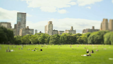 Views of Central Park, New York City, New York, USA Stock Video Footage