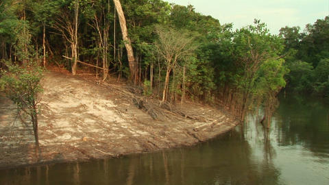 Brazil: travel on Amazon river 4 Stock Video Footage