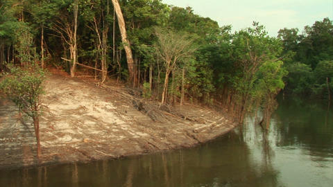 Brazil: travel on Amazon river 4 Stock Video Footage