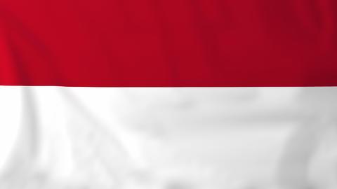 Flag of Monaco Animation