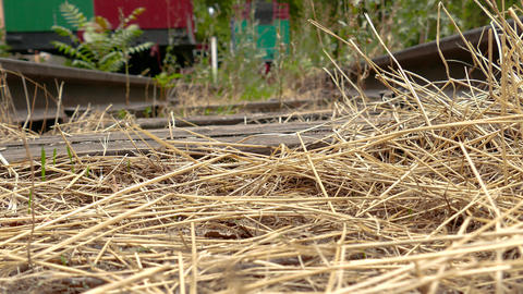 Straw On An Old Railroad Track stock footage