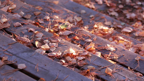 Sweeping dried autumn leaves from wooden steps Footage