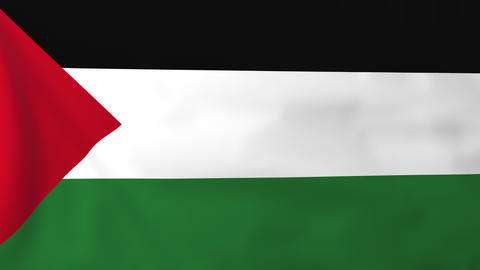 Flag of Palestine Animation