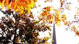 Orthodox church, sunny autumn,lens flare,tilt down, sound Footage