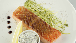 grilled salmon with lemon and sour cream sauce Footage