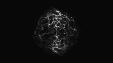 Particular Polar Coordinates 019 20151103 Animation