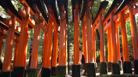 Red gate torii at Fushimi Inari temple shrine in Kyoto, Japan Footage