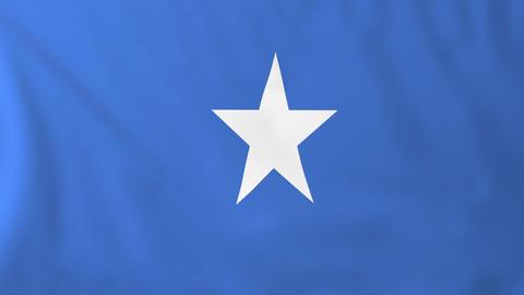 Flag of Somalia Animation
