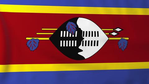 Flag of Swaziland Animation