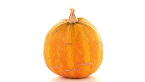 Pumpkin Footage