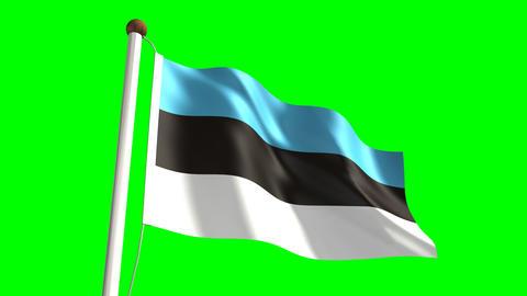 Estonian flag Animation