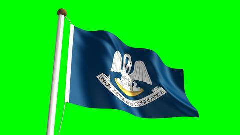Louisiana flag Animation