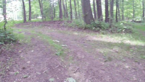 Walking or running exercise along dirt path in forest Footage