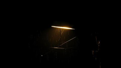 night rain Footage