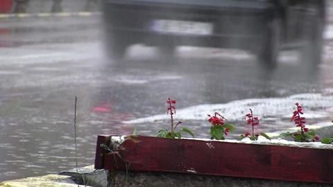 Car traffic on rain 03 Footage