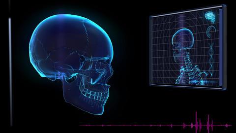 Science fiction medical design element human Skull HUD panel CG動画素材