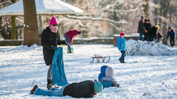 Playful Family In Park With Snow stock footage