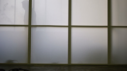 Shadows of moving people behind a window Live Action