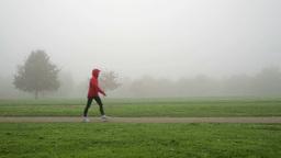 walking through foggy park close Footage