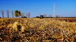 Agriculture tractor plowing autumn time farm field with corn stalks Footage