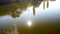 Lake landscape with trees mirrored in water, lens flare and October sun Footage