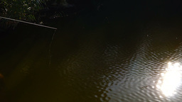 Throwing fishing rod in the lake. Lens flare Footage