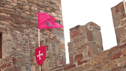 red flag with the lilies on the fortress wall Footage