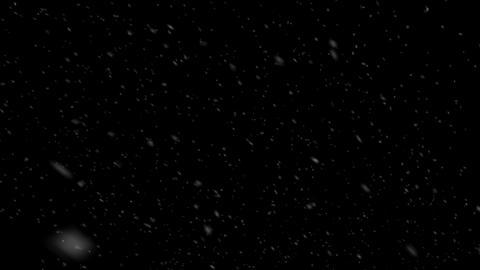 Real Snow 2 Animación