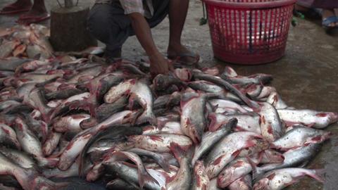 Myanmar Mandalay 0228 Footage