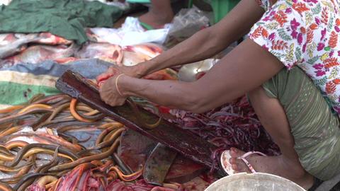 Myanmar Mandalay 0231 Footage