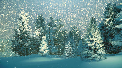 Snowy spruce forest at snowfall night Footage