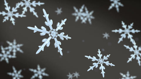 snowflakes focusing background black white Animation