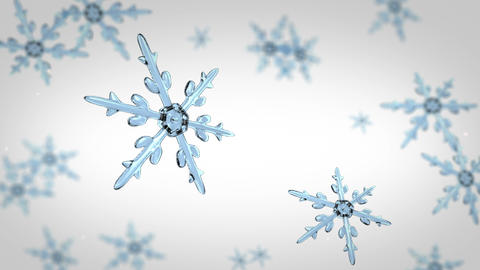 snowflakes focusing background white Animation