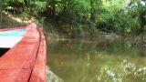 Brazil: travel on Amazon river 15 Footage