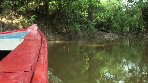 Brazil: travel on Amazon river 15 Stock Video Footage