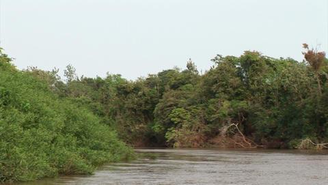 Brazil: travel on Amazon river 13 Stock Video Footage