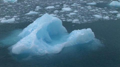 South Georgia: iceberg 1 Stock Video Footage