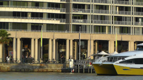 Circular Quay Port in Sydney 06 Stock Video Footage