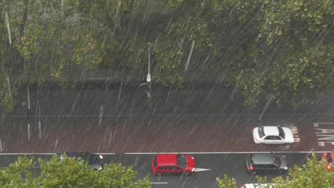 Heavy Rain in Sydney 04 Stock Video Footage