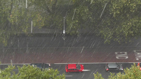 Heavy Rain in Sydney 04 Footage