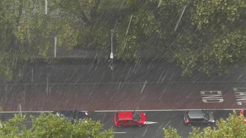 Heavy Rain in Sydney 04 Footage